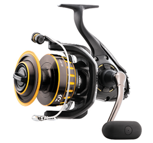 Picture of DAIWA BG3000