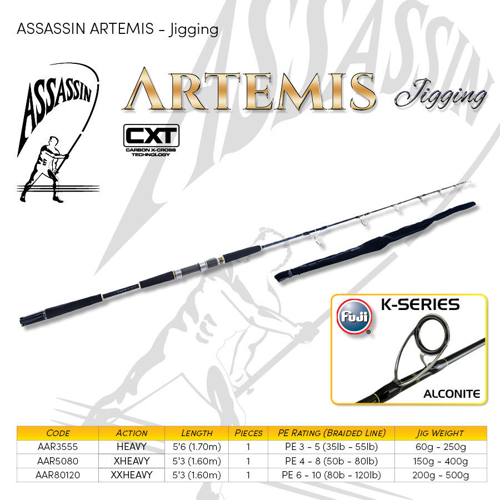 Picture of Assassin Artemis